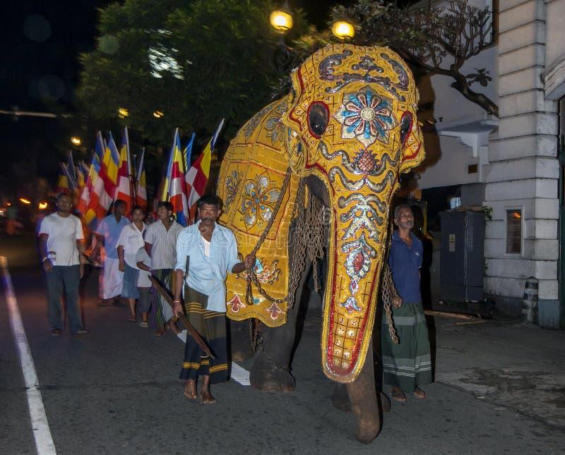 Een plechtige olifantsparades voor Boeddhistische aanhangers onderaan de straten van Kandy in Sri Lanka stock fotografie