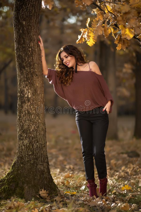 Een portret van een mooie jonge vrouw in de herfst boslifes royalty-vrije stock afbeelding