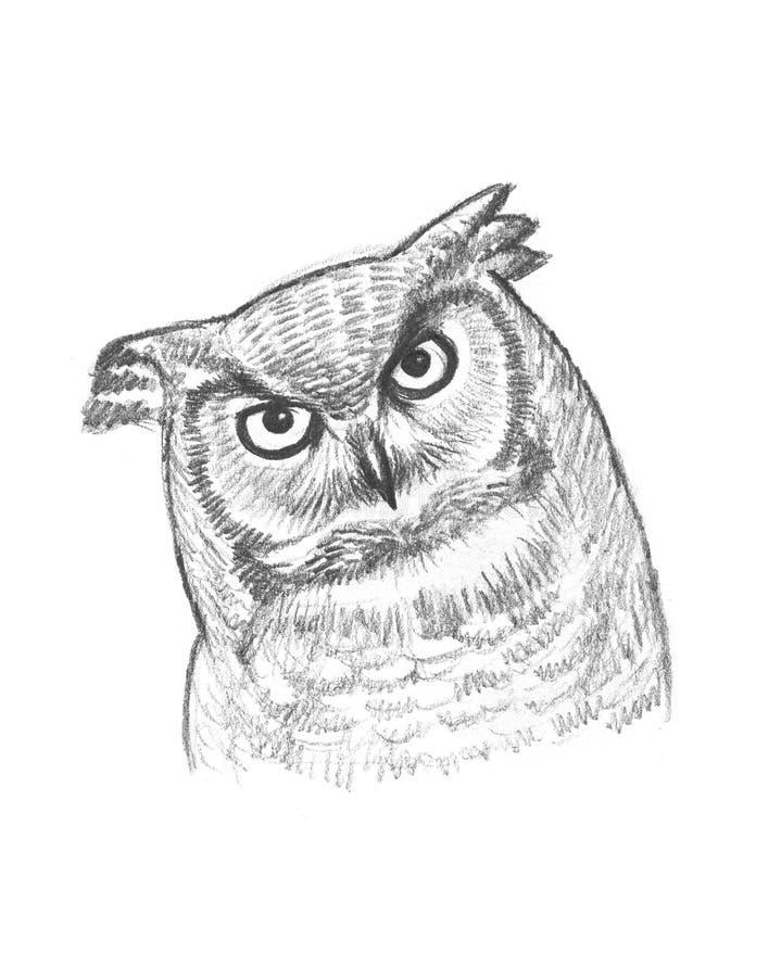 Een potloodschets van een uil stock illustratie