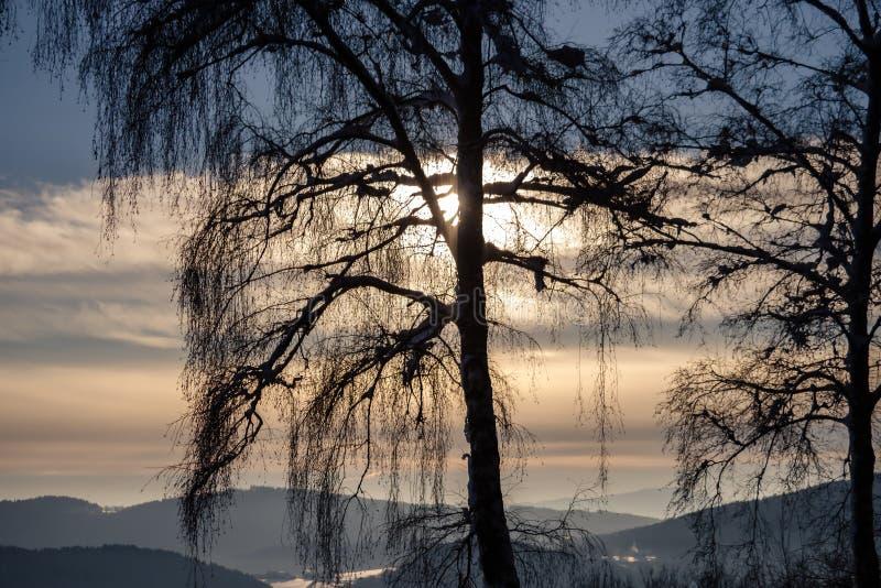 Een prachtig de winterlandschap in mooi Beieren stock foto