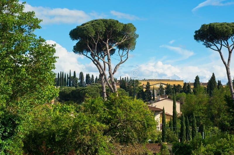 Een prachtige aanraking van Toscane stock foto's