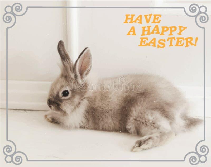 Een prentbriefkaar die een konijn en de wensen van een gelukkige Pasen-vakantie afschilderen royalty-vrije stock afbeelding