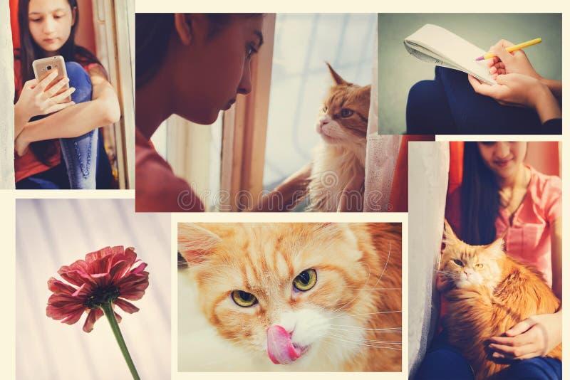 Een reeks foto's van het concept levensstijl, in de stijl van instagram royalty-vrije stock afbeelding