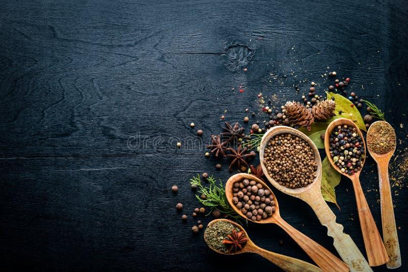 Een reeks geurige kruiden Een mengsel van zwarte en Spaanse peper, koriander, paprika stock afbeeldingen