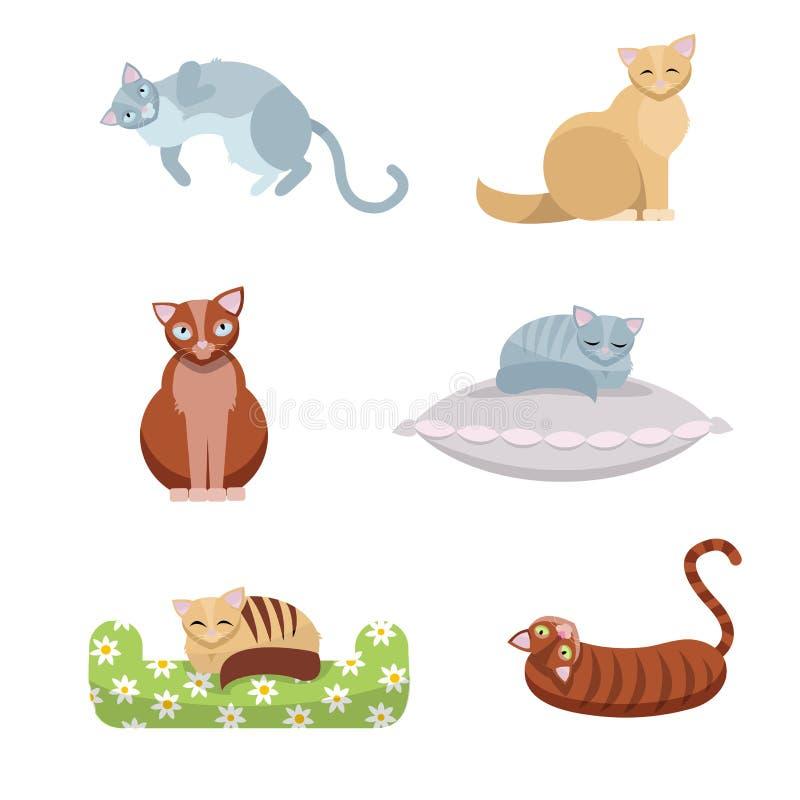 Een reeks leuke langharige en kortharige katten, die zitten en op een hoofdkussen en een laag op witte achtergrond liggen Vlakke  vector illustratie