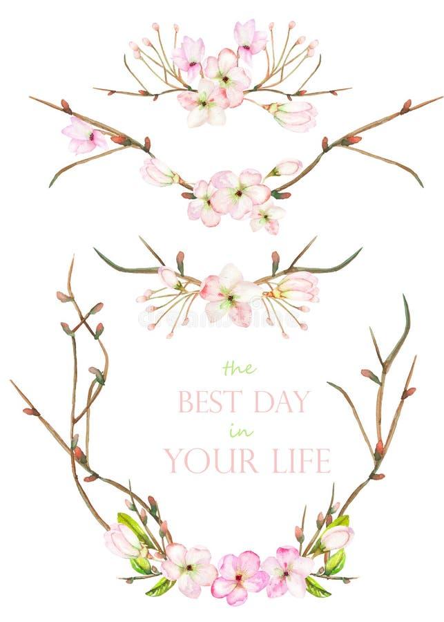 Een reeks met de kadergrenzen, bloemen decoratieve ornamenten met de waterverf die bloeit, gaat en vertakt zich met de knoppen we stock illustratie