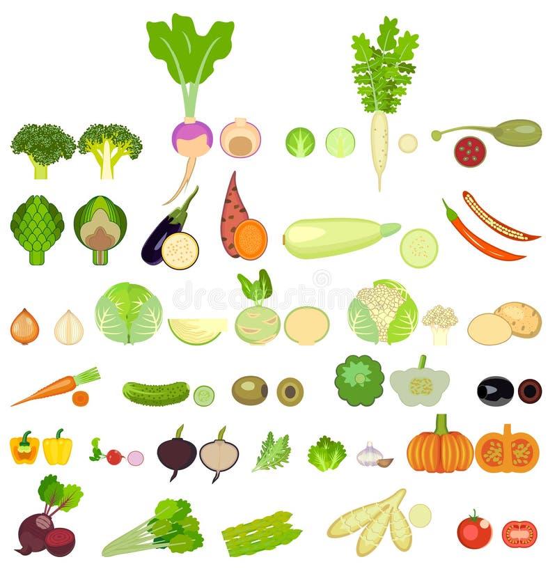 Een reeks pictogrammen van groenten van verschillend soort vector illustratie