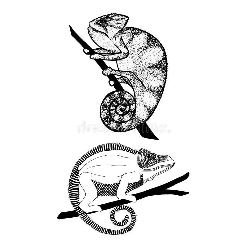 Een reeks pijlen, gidsen stock illustratie