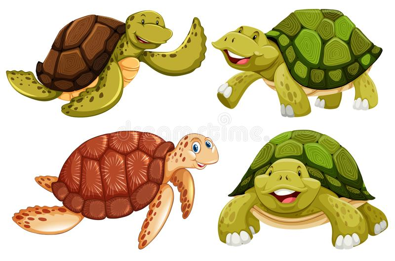 Een reeks van zeeschildpad vector illustratie