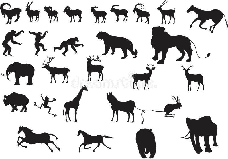 Een reeks vectordierensilhouetten royalty-vrije illustratie