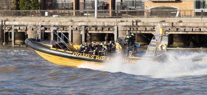 Een Ribcraft-motorboot werkte als toeristische attractie op de Rivier Theems door Theems stock afbeeldingen