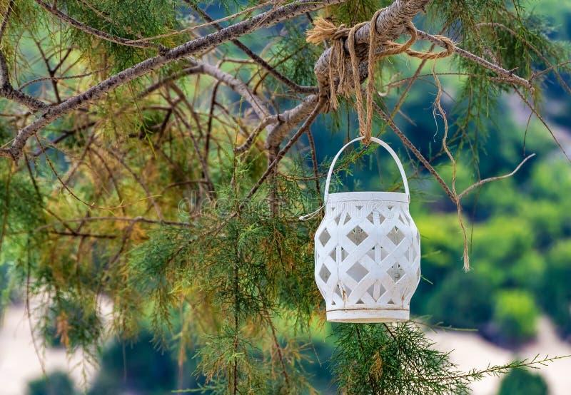 Een rieten witte lantaarn met een witte kaars binnen het hangen op een ruwe gele kabel op een tak van een boomthuja op het onduid stock foto's