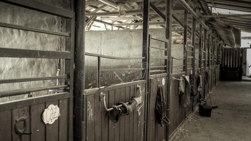 Een rij van boxen in een stal stock afbeelding