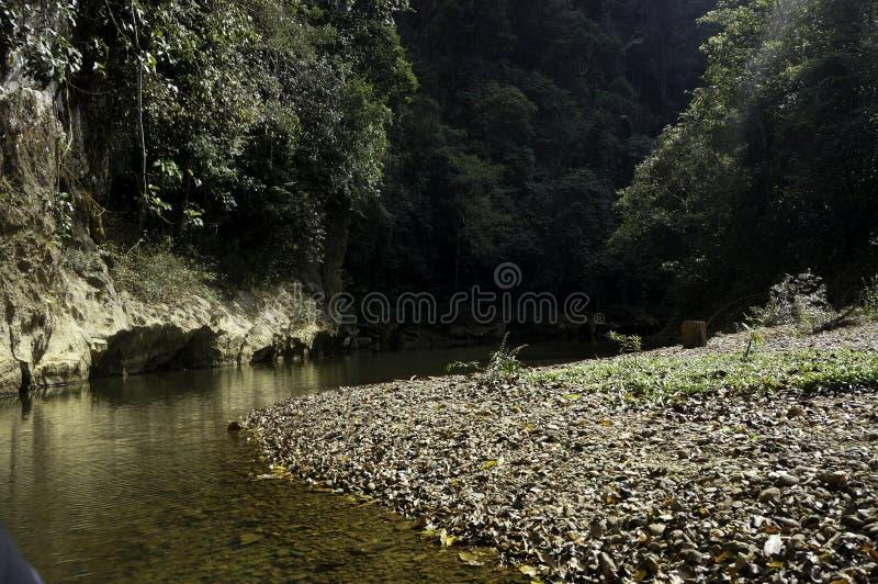 een rivier in de wildernis in Thailand royalty-vrije stock afbeeldingen