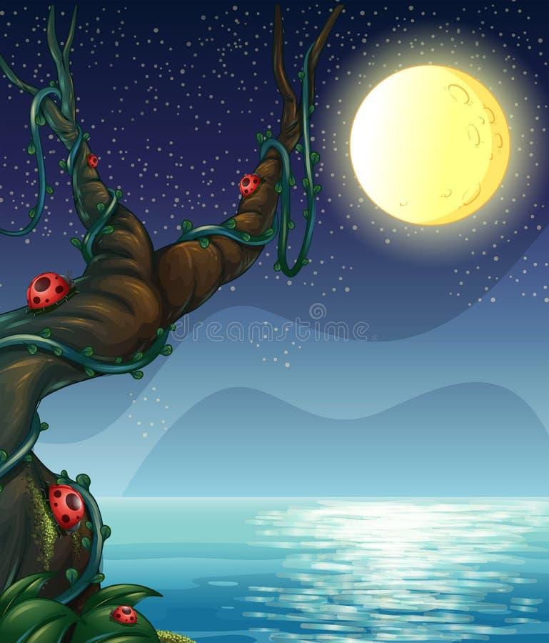 Een rivier en een maan royalty-vrije illustratie