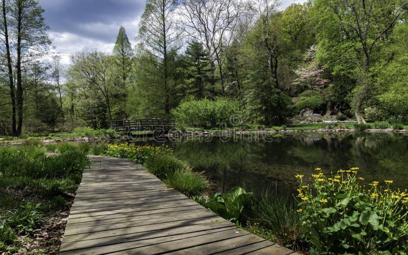 Een rivier neemt het door stock fotografie