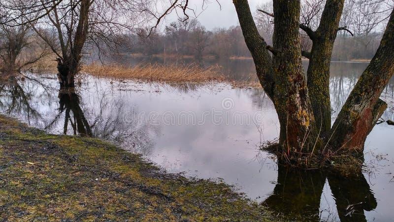 Een rivier voor visserij in aard stock foto's