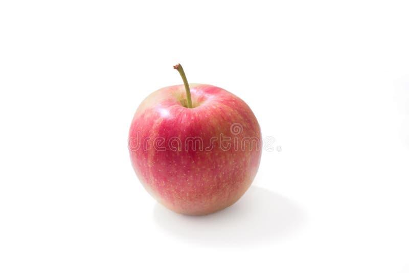 Een rode appel, kleine, met witte achtergrond royalty-vrije stock foto's