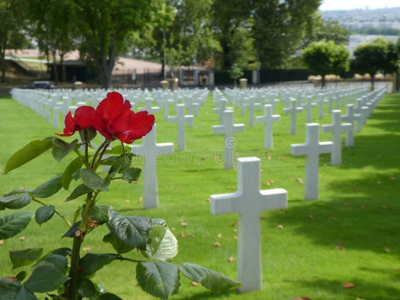 Een rood nam, met witte kruisen op de achtergrond op een groen gazon, bij de Amerikaanse Begraafplaats in Suresnes, Frankrijk, 20 stock foto's