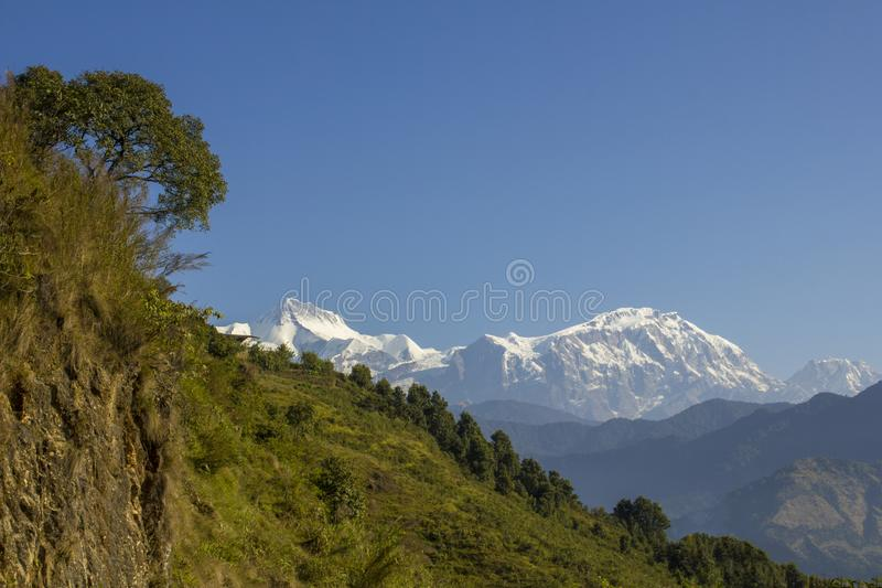 Een rots en een groene helling met een boom tegen een schone blauwe hemel en bergen met sneeuwpieken Annapurna Nepal stock fotografie