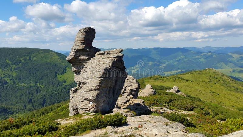 Een rots met de vorm van het gezicht Is van aard benieuwd stock afbeelding