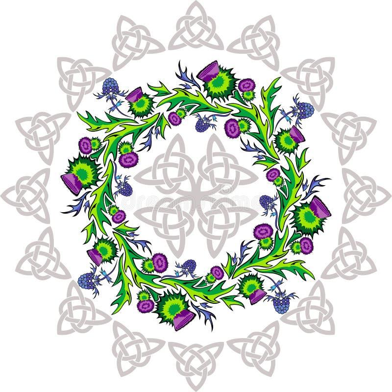Een rozet met distel bloeit en Keltische knopen vector illustratie