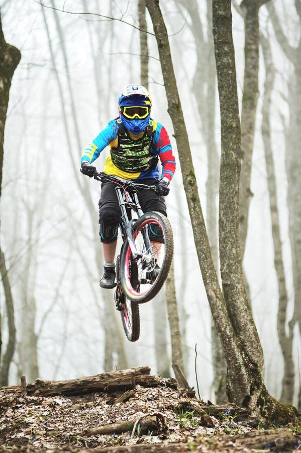 Een ruiter van de bergfiets springt van een springplank in een mistig bos, in de Bergen van de Kaukasus stock afbeelding