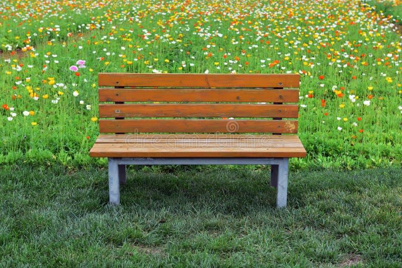 Een rust zetel in het park royalty-vrije stock fotografie