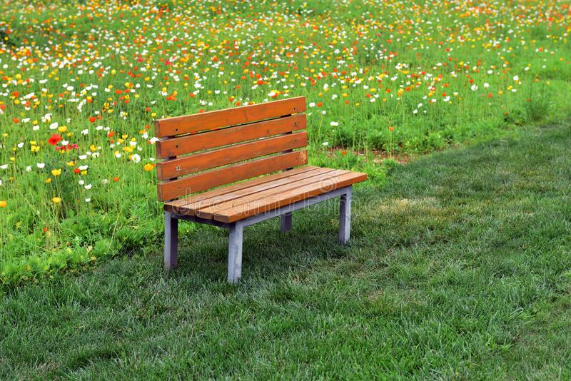 Een rust zetel in het park royalty-vrije stock foto's