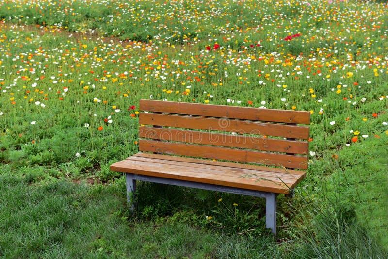 Een rust zetel in het park royalty-vrije stock foto