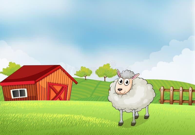 Een schaap in het landbouwbedrijf met schuur en houten omheining bij de rug royalty-vrije illustratie