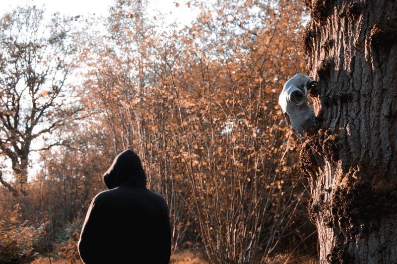 Een schapenschedel die van een boom hangen, terwijl een sinister cijfer zich met een kap op de achtergrond bevindt, vertroebelde  stock afbeelding