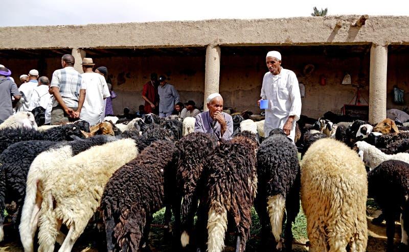 Een schapenverkoper in souk van de stad van Rissani in Marokko stock afbeelding