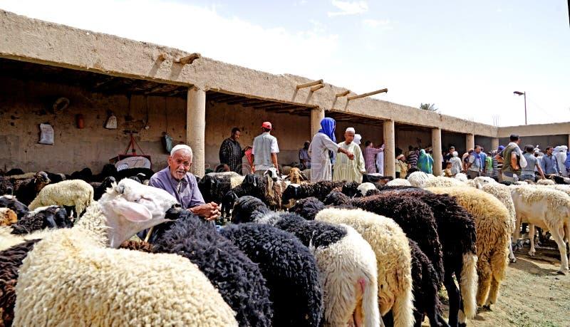 Een schapenverkoper in souk van de stad van Rissani in Marokko royalty-vrije stock foto's