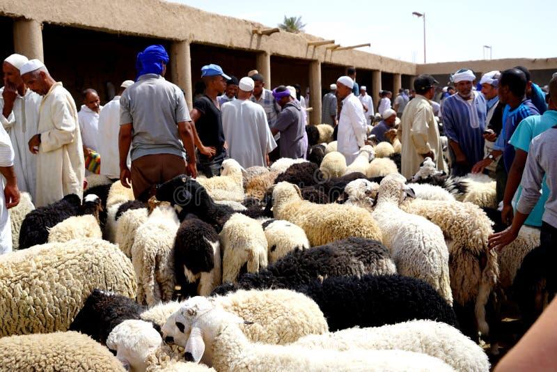Een schapenverkoper in souk van de stad van Rissani in Marokko stock foto's