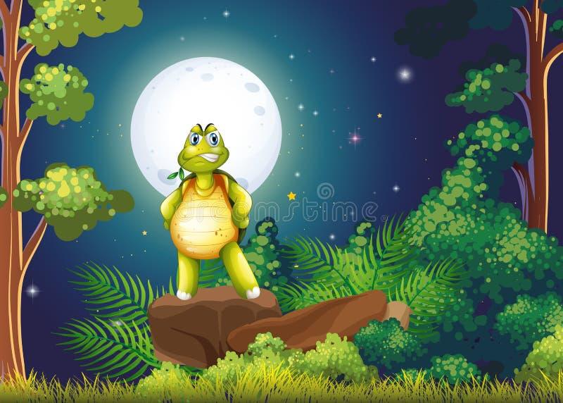 Een schildpad die zich boven de rots in het midden van het bos bevinden stock illustratie