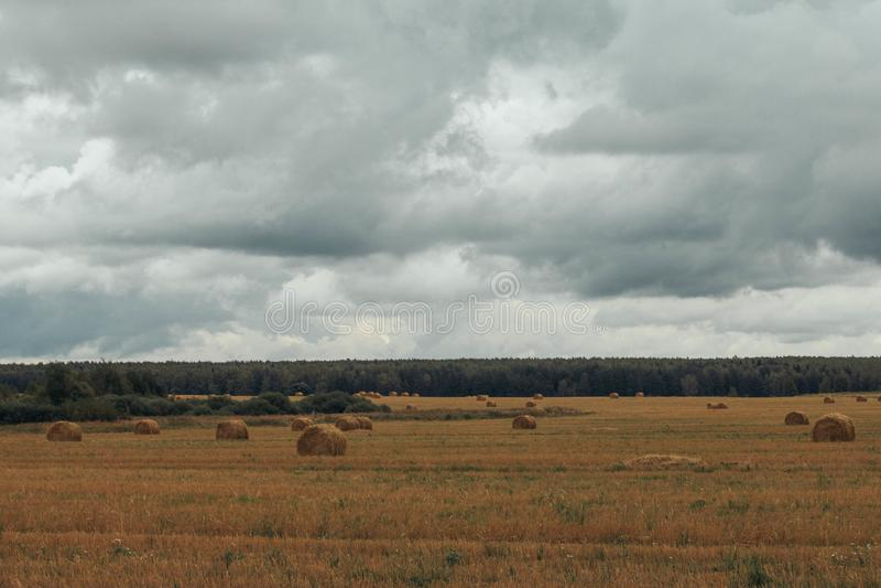 Een schoof van hooi op geel de herfstgebied op een bewolkte hemel als achtergrond De oogst van hooi De herfstlandschap op het geb royalty-vrije stock foto's