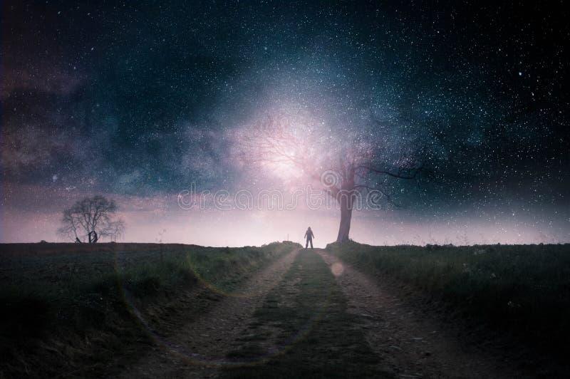 Een science fictionconcept Een geheimzinnig cijfer met een kap dat tegen een helder licht door een dode boom op een weg van het l royalty-vrije illustratie