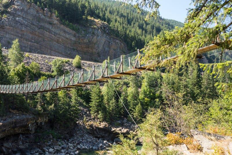 Een slingerende brug over een ravijn in Montana royalty-vrije stock foto's