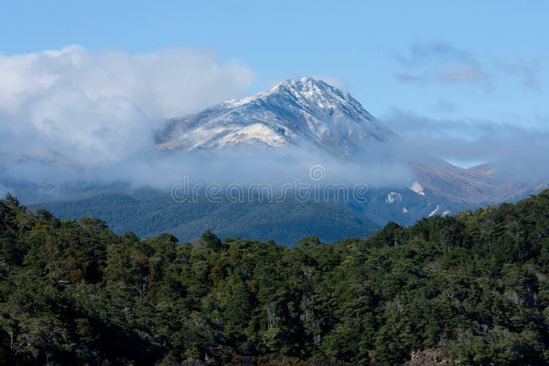 Een sneeuw behandelde bergpiek dichtbij het Meer Manapouri in Nieuw Zeeland stock afbeeldingen