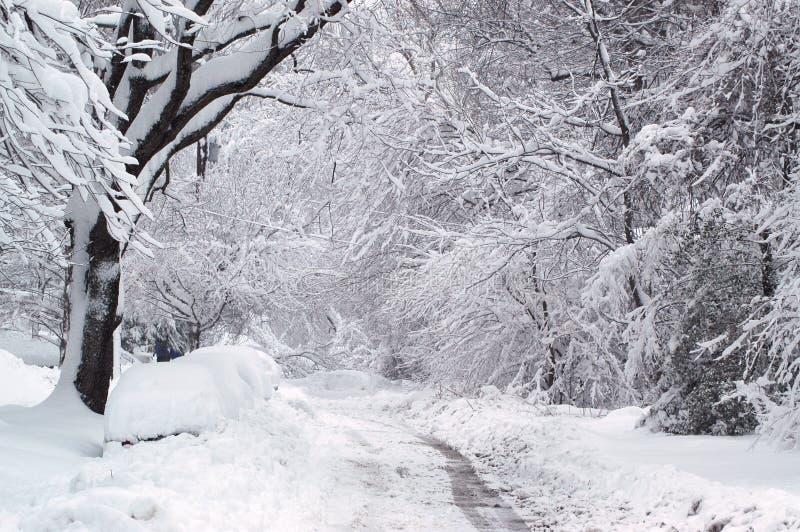 De Sleep van de winter stock fotografie