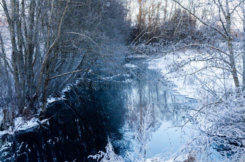 Een sneeuwbeek in het midden van het hout royalty-vrije stock afbeelding