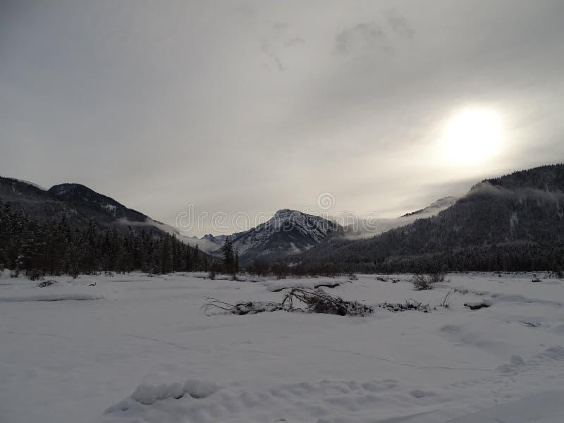Een sneeuwrivierbed langs het dorp Vorderriss Beieren stock fotografie