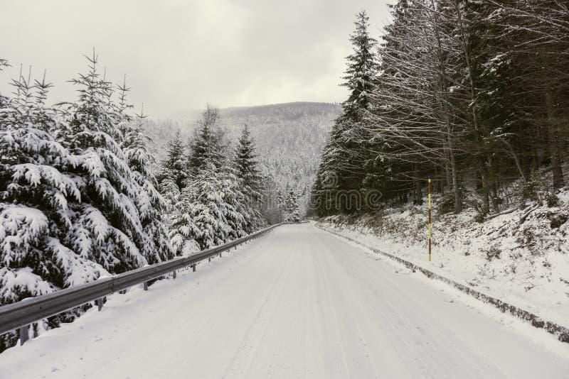 Een sneeuwweg in de bergen stock foto