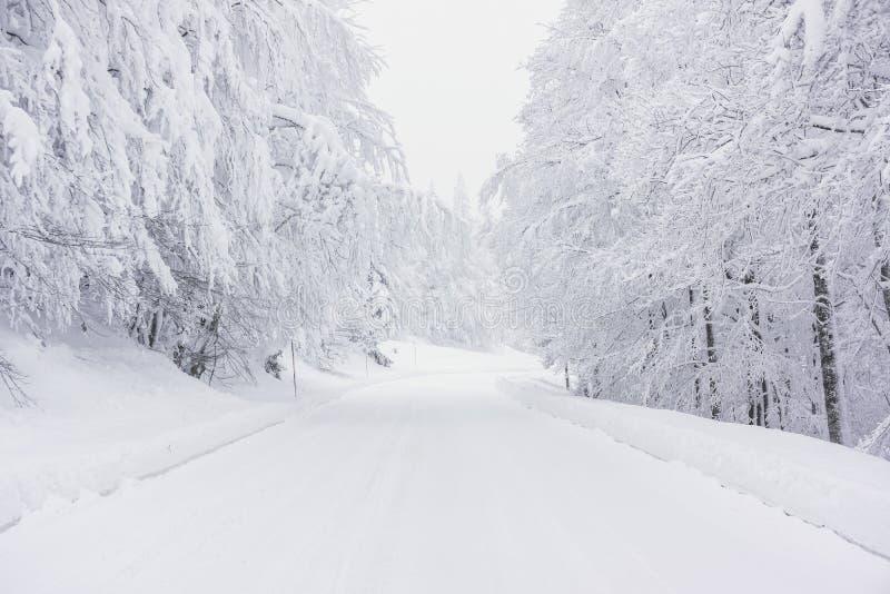 Een sneeuwweg in de bergen stock fotografie