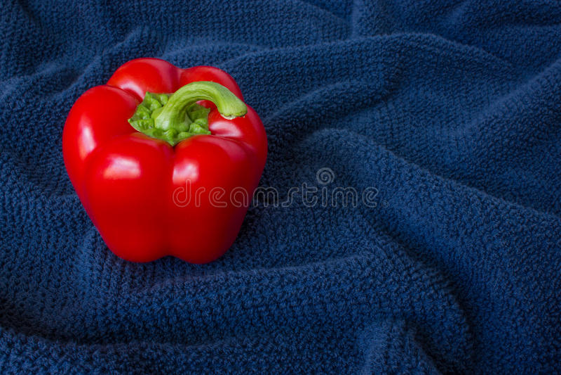 Een Spaanse peper op een blauwe achtergrond stock fotografie