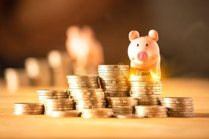 Een spaarvarken op muntstukken voor het concept van het besparingsgeld, investeert voortaan beheer van zaken, het verzekeringslev stock fotografie