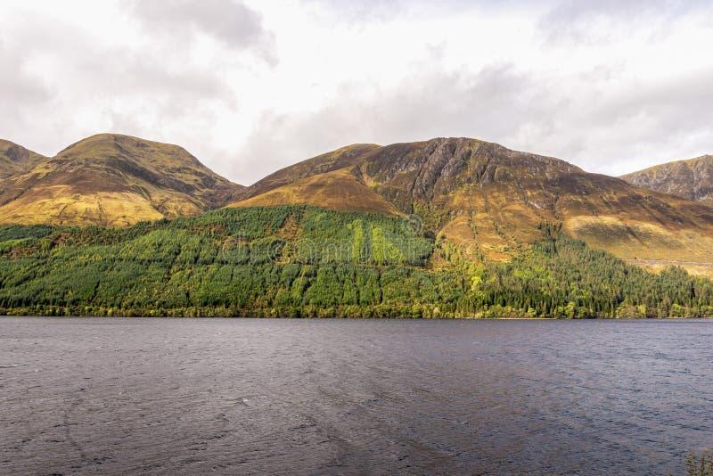 Een spectaculaire mening van kleurrijke donkere gele en bruine hooglanden aan noordelijke kant van Loch Lochty, Lochaber, Schotse stock foto