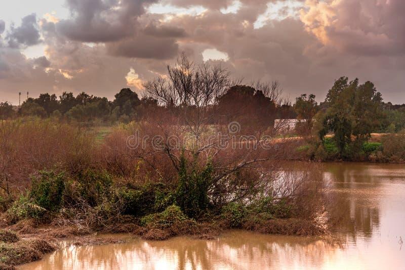 Een spectaculaire zonsondergang over een meer en een wilde vegetatie stock afbeeldingen