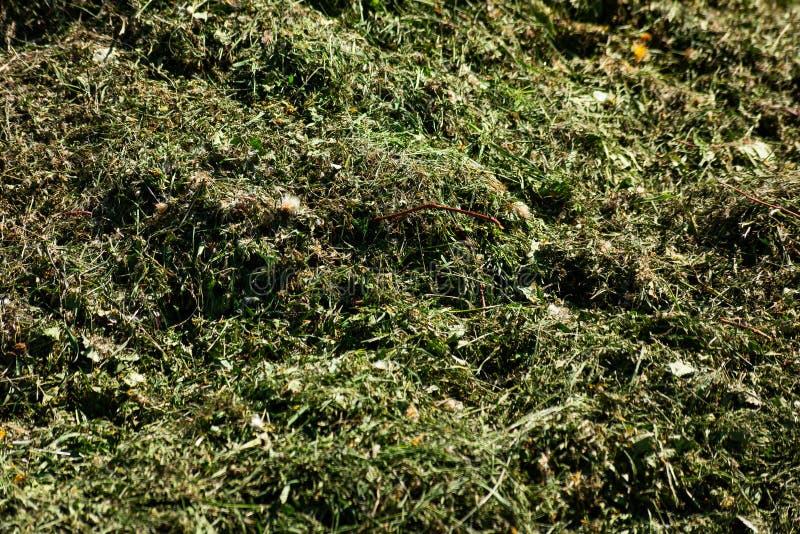 Een stapel van het vernietigen van gras royalty-vrije stock afbeeldingen